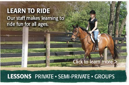 Horseback Riding Lessons Bucks County PA