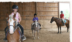 Horse Riding Summer Camps